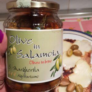 olivesic1 Cropped